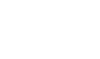 wishyoo-logo-white